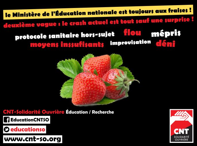 cnt_so_educ_ministere_2e_vague.png